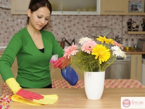 Основные правила для поддержания «здоровой» атмосферы в квартире