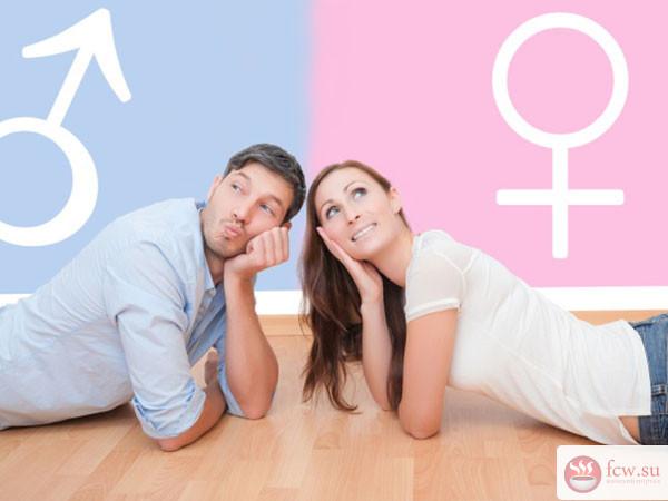В чем отличие мужской и женской психологии