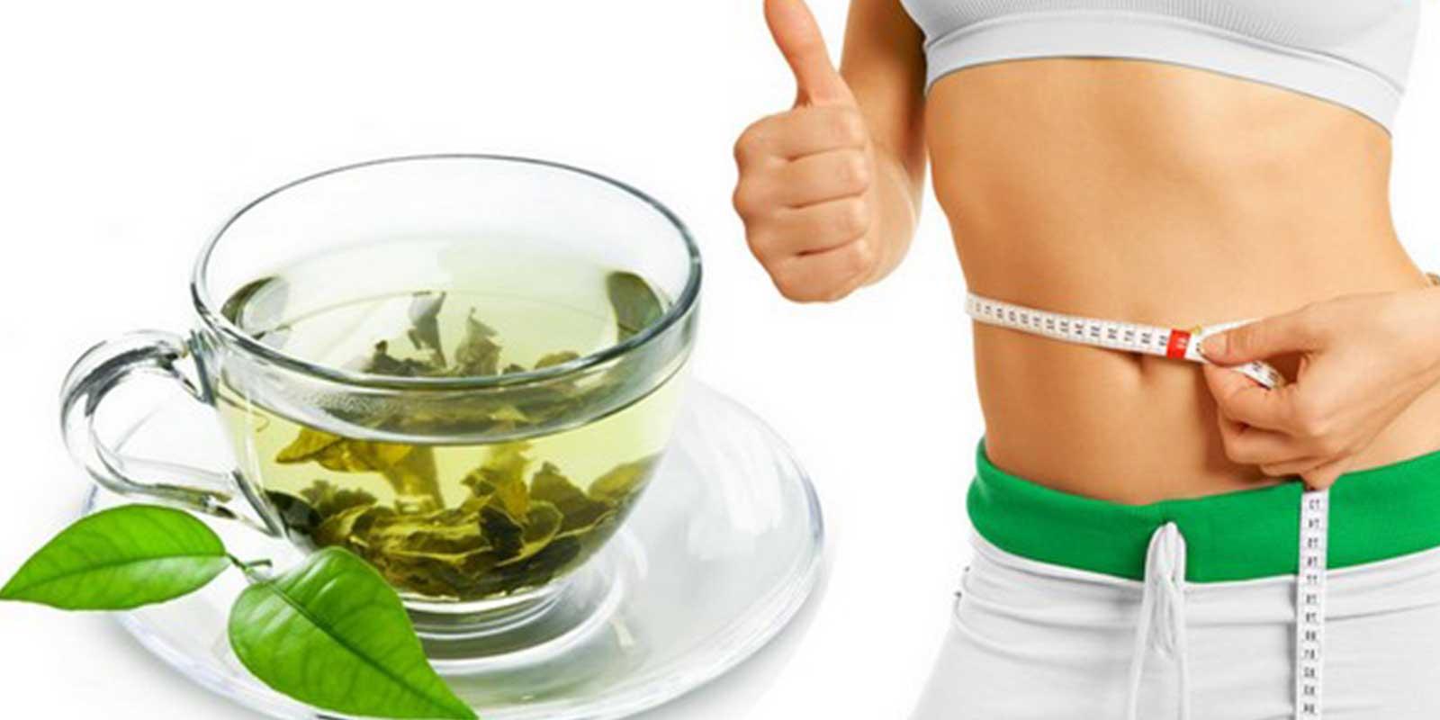 Как Сбросить Вес На Зеленом Чае. Как зеленый чай помогает похудеть